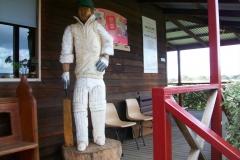 cricket17_1536x2048
